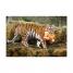 Чемодан на колесиках Тигр Типу